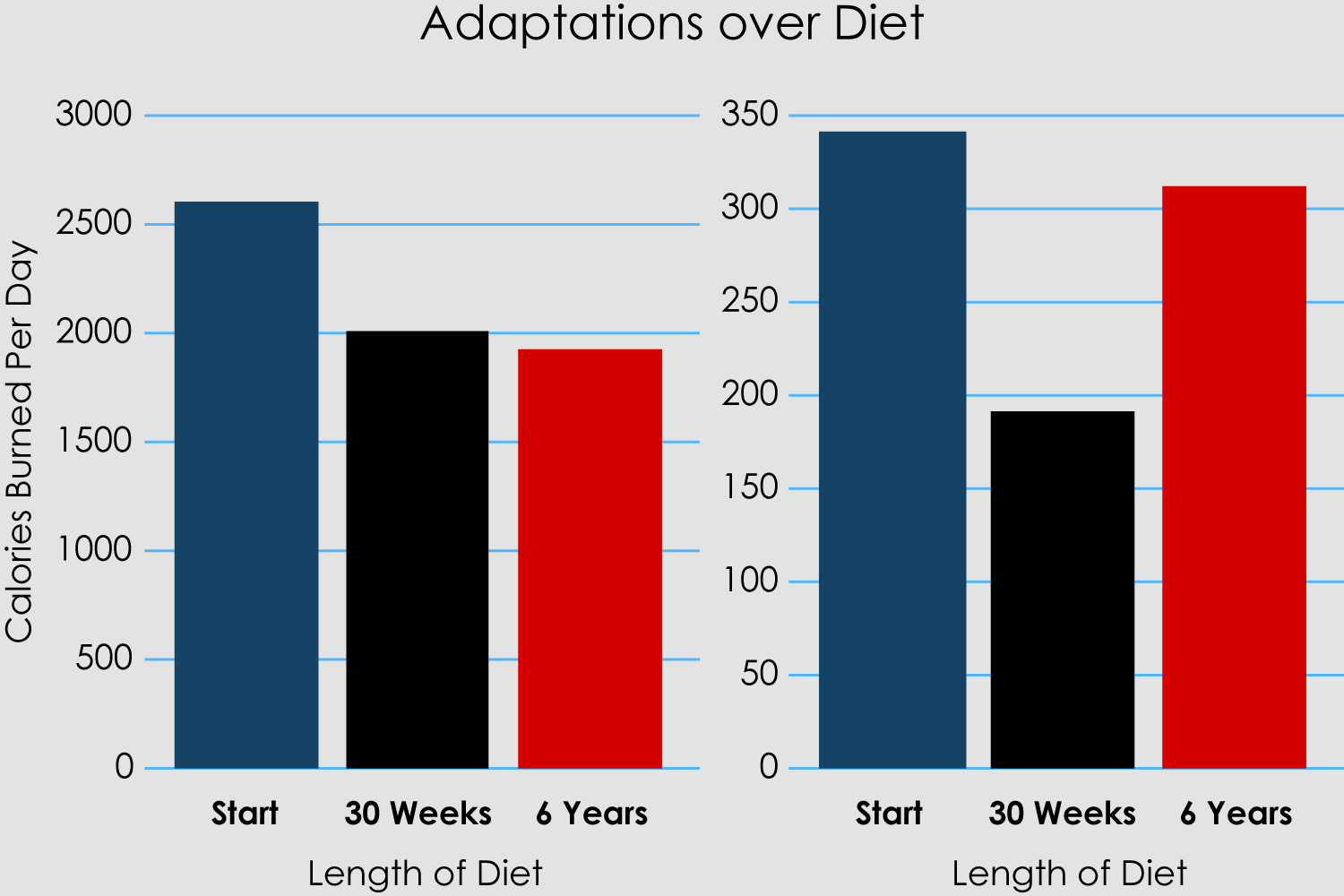 Adaptations-over-diet