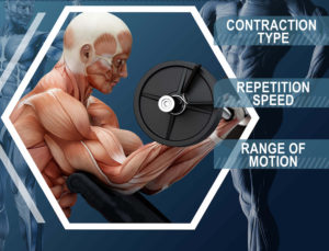types-of-muscle-contractions