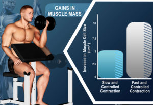 slow-muscle-contractions