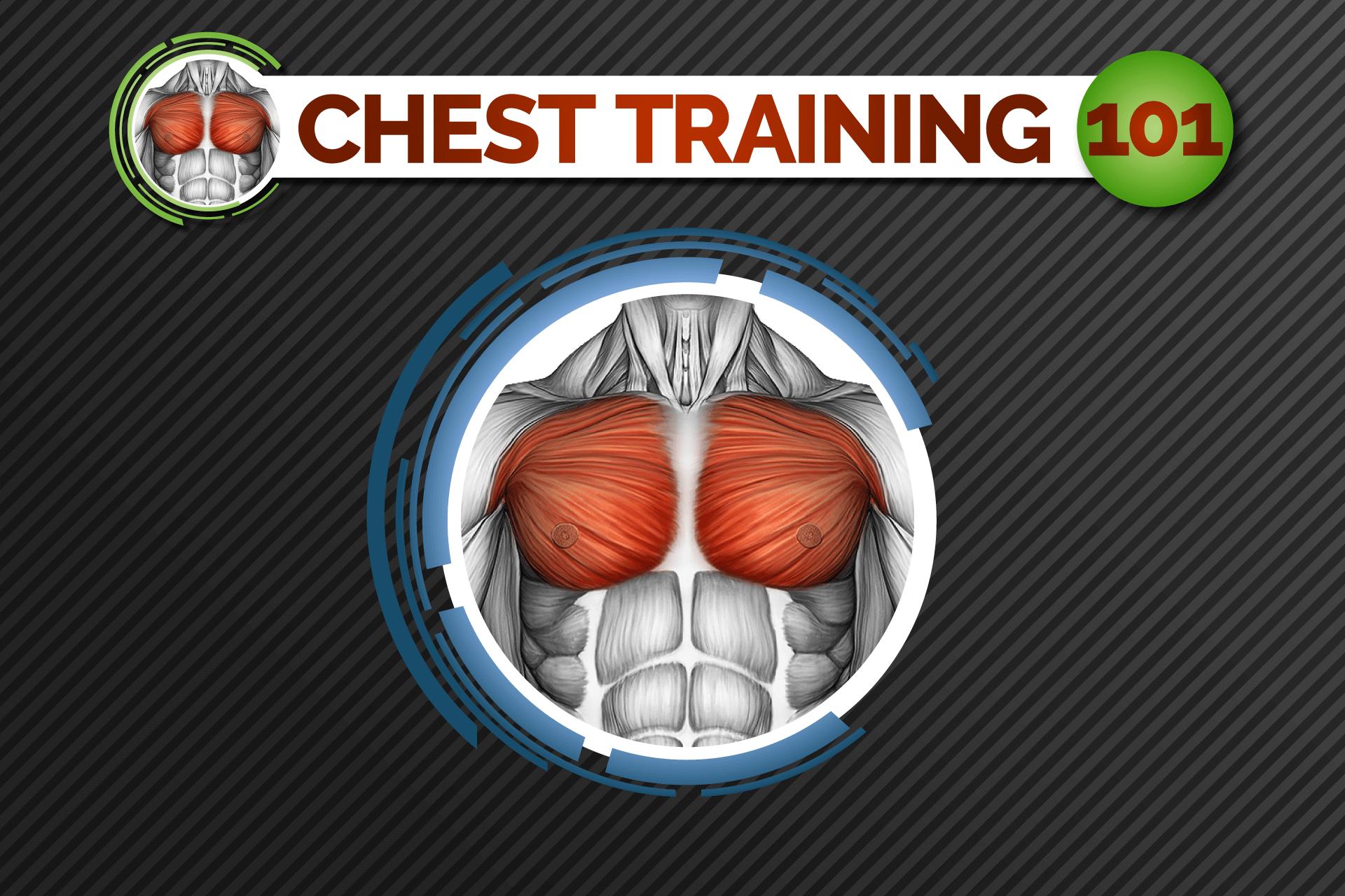 chest-training-101