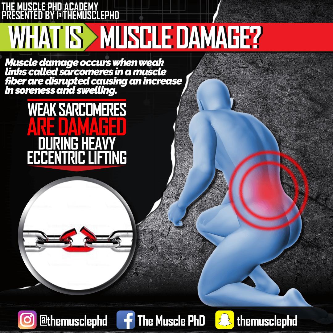 muscle-damage