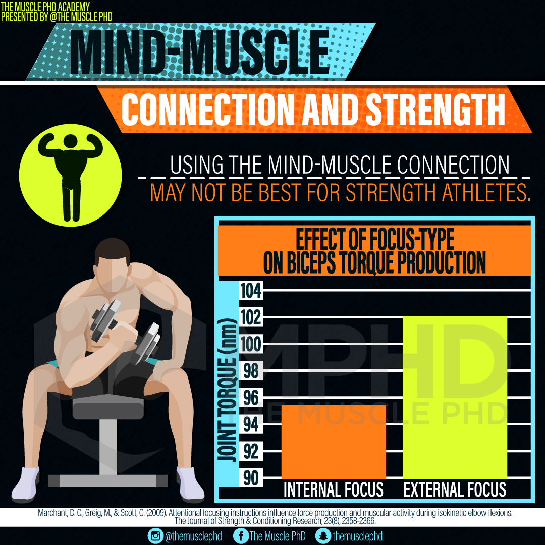 Mind Muscle Connection And Strength The Muscle Phd