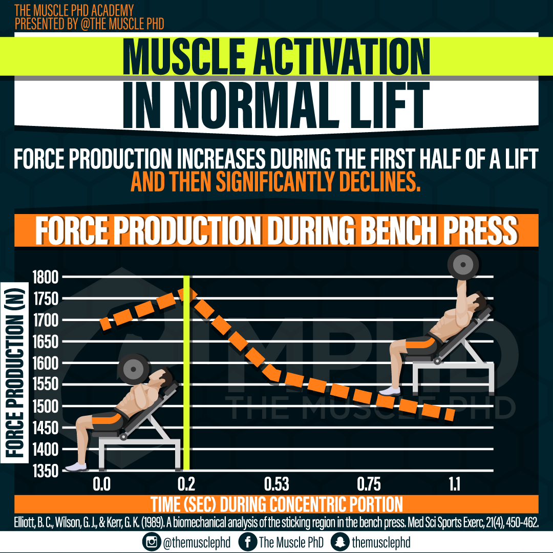 Muscle Activation During Normal Lifts