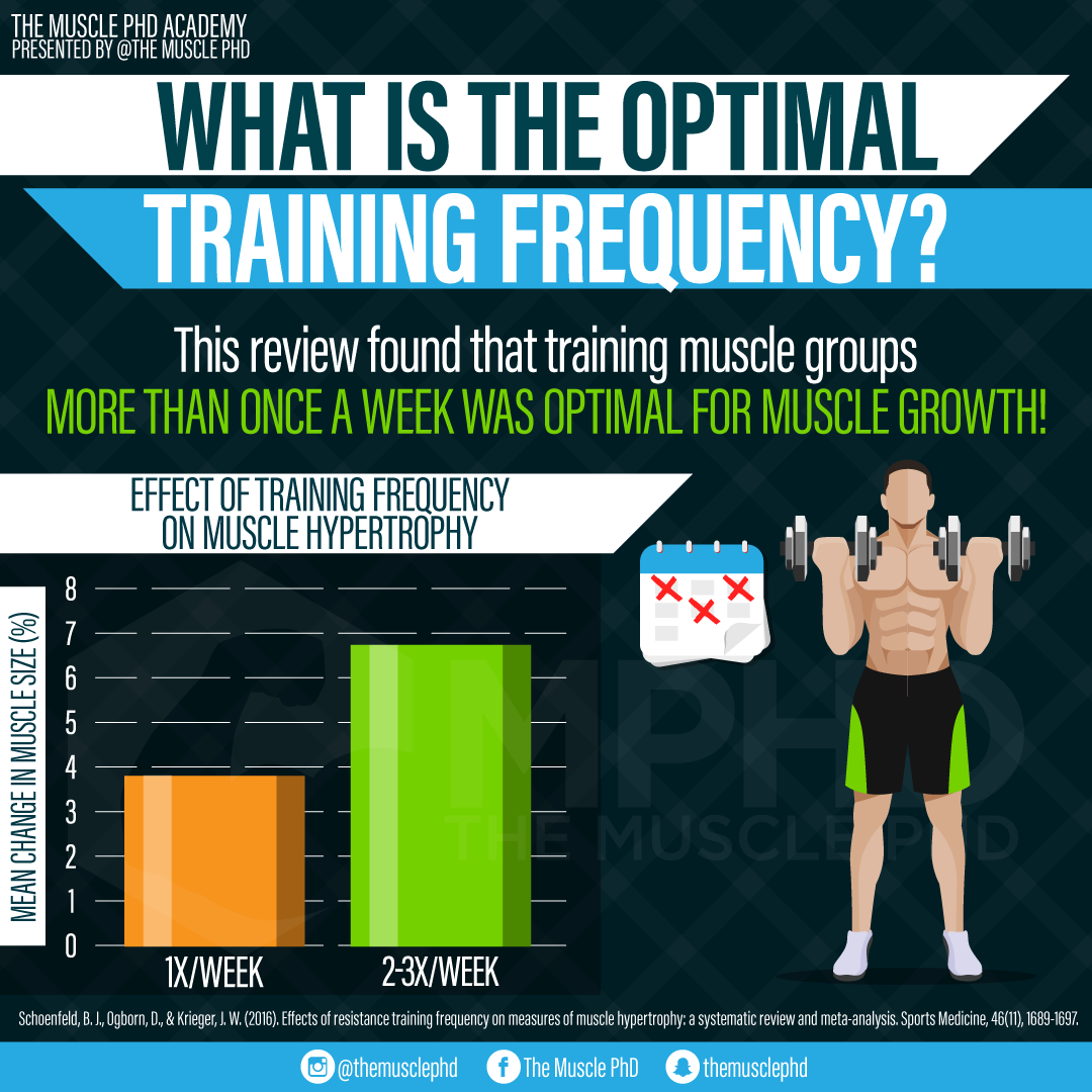 Optimal Training Frequency