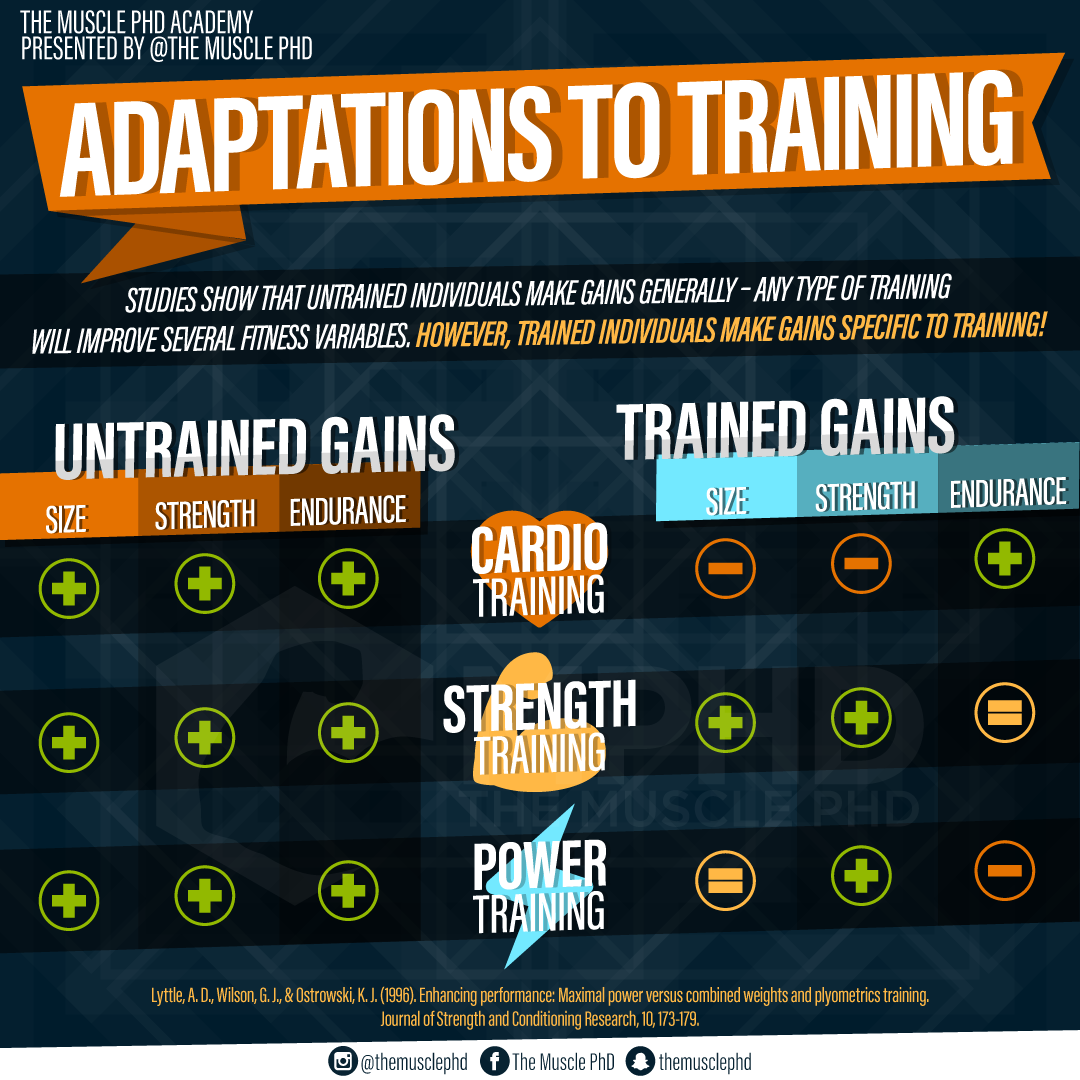 Training Experience and Adaptations