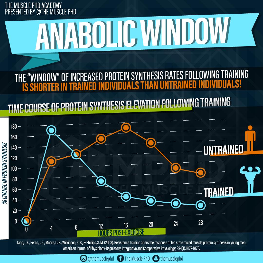 The Anabolic Window