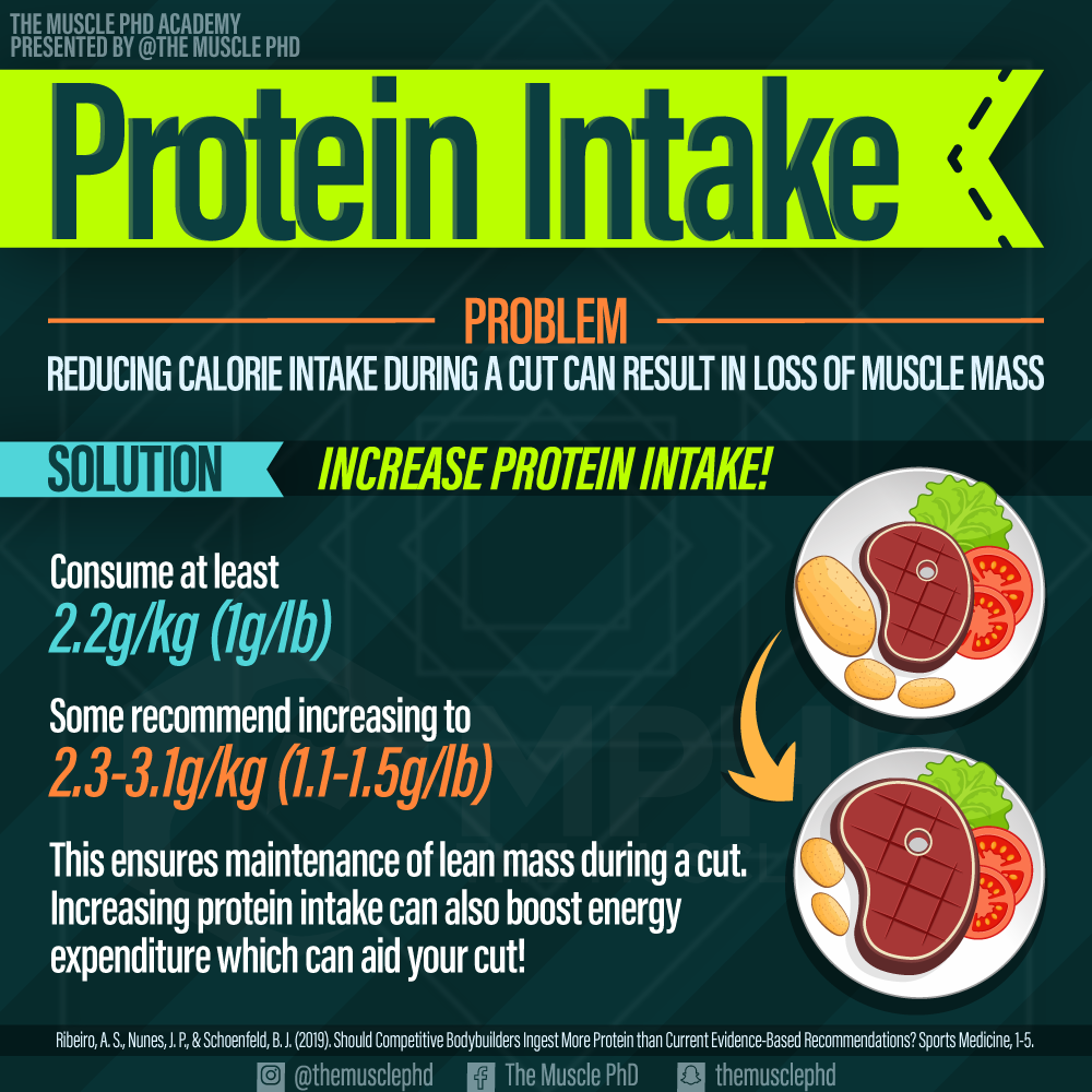 Protein Intake for Cutting