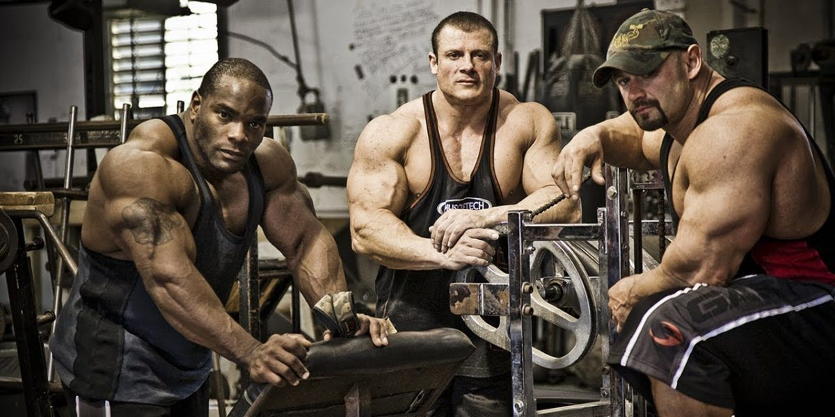 The Training Partner Rule Book